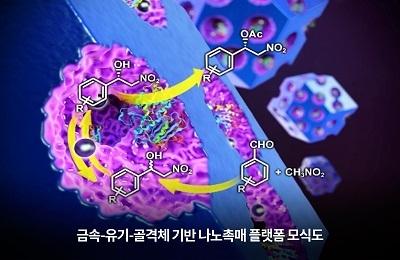화학 이인수 교수팀, 단일촉매로 정밀의약품 제조 공정 줄인다