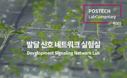 발달 신호 네트워크 실험실<br>Development Signaling Network Lab